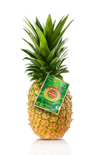 Del Monte Europe Gold Pineapple Extra